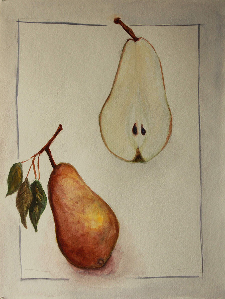 Pear Stydy