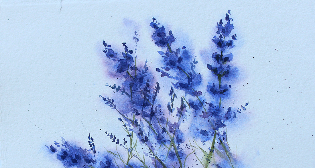 lavender watercolor painting